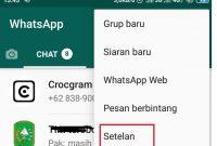 cara menghilangkan waktu online di whatsapp